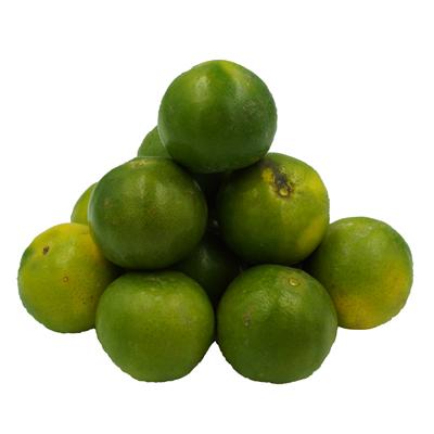 ส้มเขียวหวาน เบอร์ 1