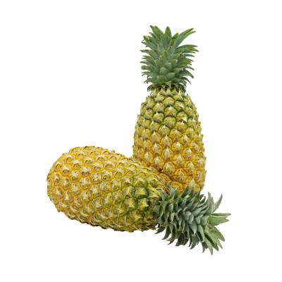 สับปะรดศรีราชา เนื้อ1 1.5-1.8 กก.ต่อลูก