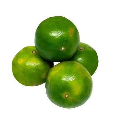 ส้มสายน้ำผึ้ง เบอร์ 5