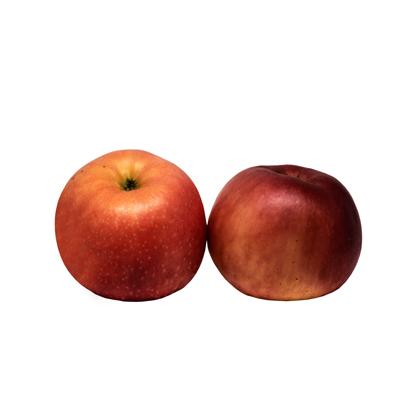 แอปเปิ้ลฟูจิ เบอร์ 88