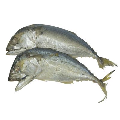 ปลาทูนึ่งกลาง 2 ตัวต่อแพ๊ค ขนาด 6x11.5 ซม.
