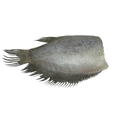ปลาสลิดแดดเดียว 12 ตัวต่อ กก.