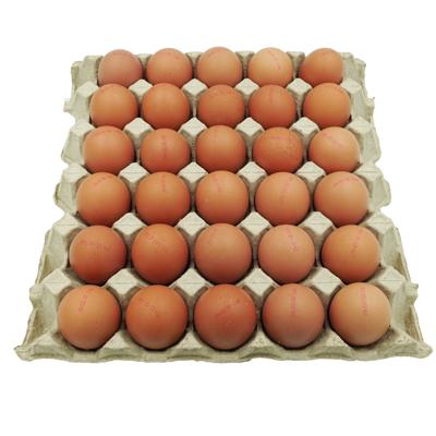 ไข่ไก่-เบอร์-0-อนามัย