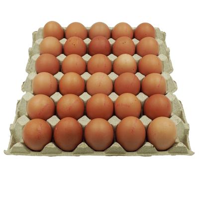 ไข่ไก่-เบอร์-3-อนามัย